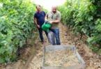 Syngenta quer impulsionar adoção de boas práticas para a conservação do solo