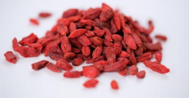 Chegou a Portugal nova variedade de goji resistente ao oídio