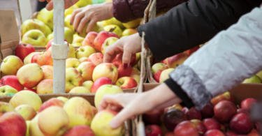 Fruta Feia já evitou mais de 1300 toneladas de desperdício