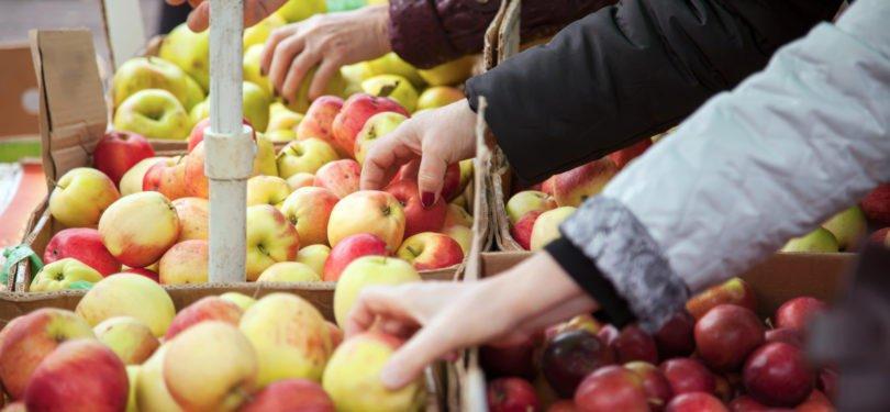 50 milhões de toneladas de fruta e legumes 'feios' são desperdiçados anualmente