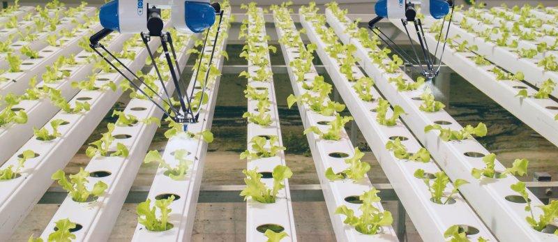 Digitalização da agricultura é o próximo desafio