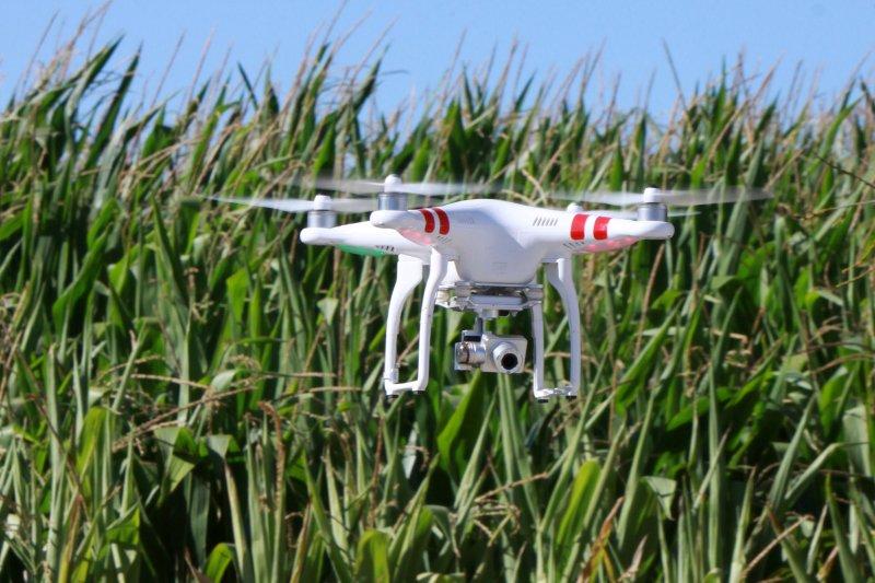 Vai nascer em Portugal um 'Hub Digital para a Agricultura'