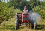 São a 'espinha dorsal' do mundo rural, mas são discriminadas: o retrato da Mulher agricultora
