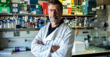 """InnovPlantProtect vai desenvolver """"soluções químico-biológicas"""""""