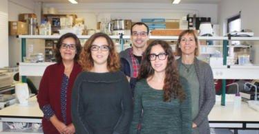 Investigadores de Aveiro descobrem bactérias que ajudam plantas a tolerar períodos de seca