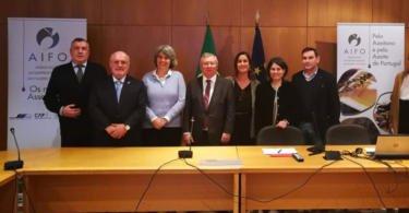 Interprofissional do Azeite de Portugal quer acordo sectorial em 2019