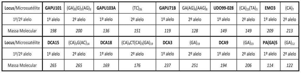 Cultivares de Oliveira: Cordovil de Trás-os-Montes