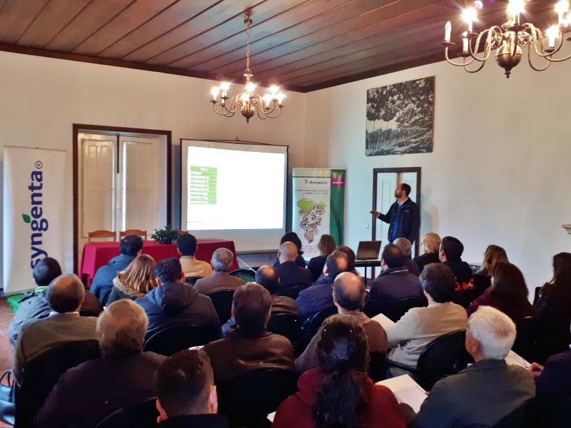 Syngenta apresenta resultados da estratégia de proteção fitossanitária na região dos Vinhos Verdes
