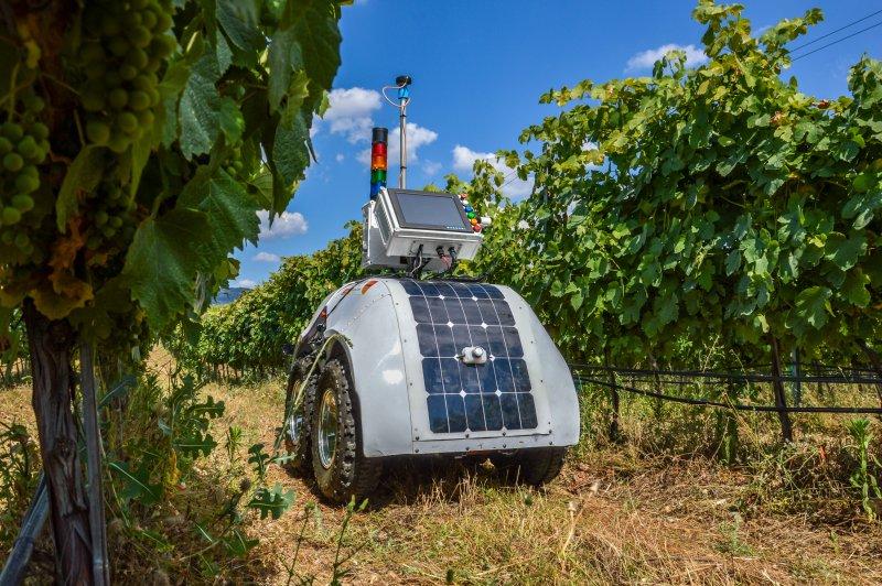 VinScout: o robot que pode ser o braço direito do agricultor