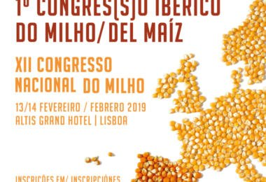 1º Congresso Ibérico do Milho realiza-se em fevereiro