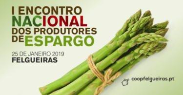 I Encontro Nacional dos Produtores de Espargo é já na próxima semana