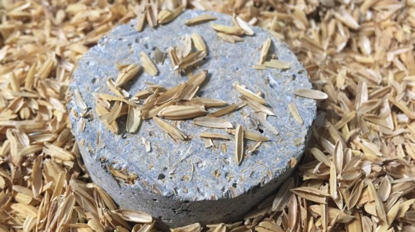 sustentabilidade- casca de arroz