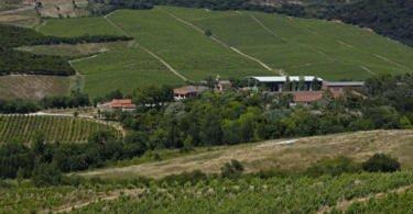 Sogrape anuncia aquisição da Quinta da Romeira