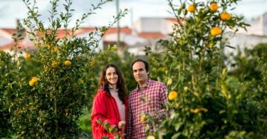 Sabe o que são os citrinos ancestrais?