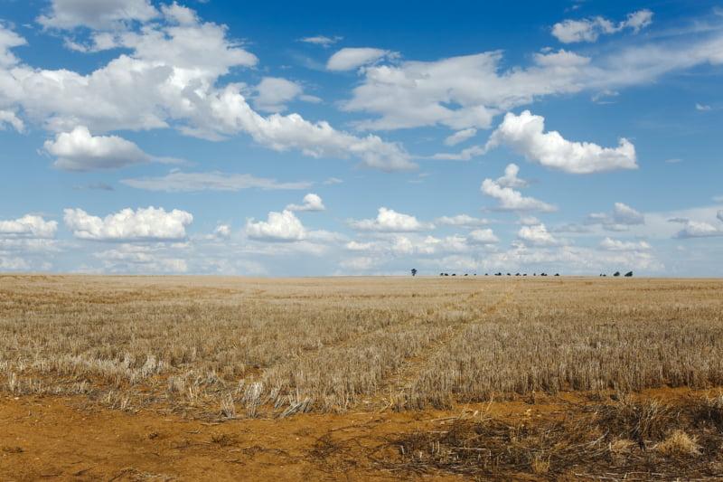 Portugal em situação de seca