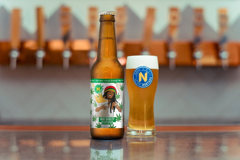 Nortada lança cerveja aromatizada com flores de cânhamo