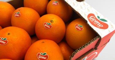 """Frusoal apostada em """"valorizar citrinos do Algarve"""""""