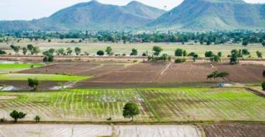 Cabo Verde pode ser exemplo para países com escassez de água na agricultura