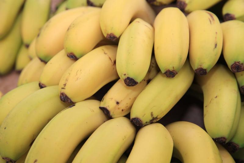 Crédito Agrícola lança seguro de colheitas para bananicultores da Madeira