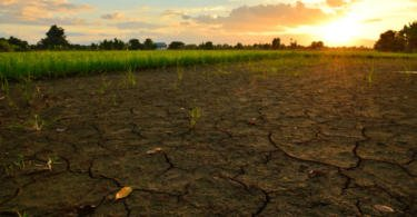 Governo tem 3 M€ para captação de água para combater a seca
