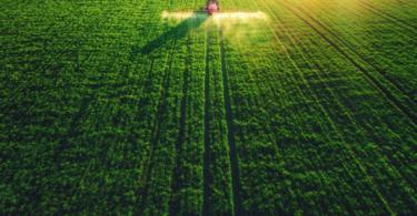 Custos da importação global de alimentos devem diminuir