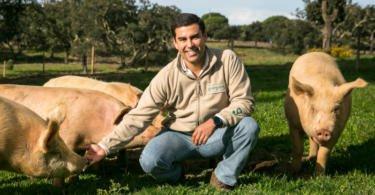 A Go Organic é uma das maiores produções em modo biológico de porco branco da Europa