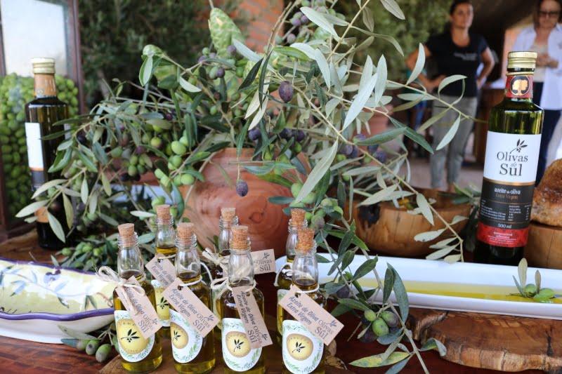 produção de azeite no Brasil