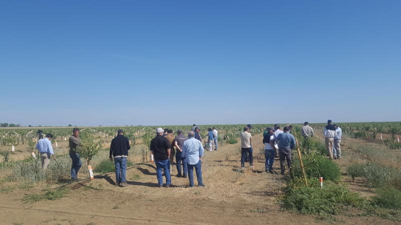 Portugueses visitam agricultura da Califórnia