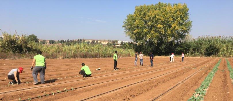 Semear a inclusão no setor agroalimentar