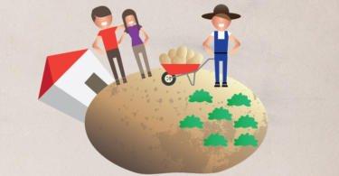 Setor da distribuição lança nova campanha para promover batata portuguesa
