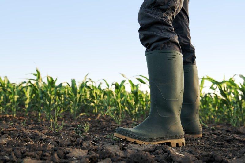 """Confagri diz que agricultura nacional tem pela frente um """"novo ciclo mais exigente"""""""