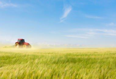 PSD quer 'simplex agrícola' e entidade reguladora para o setor agroalimentar