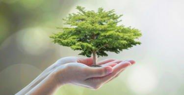 sustentabilidade vida rural