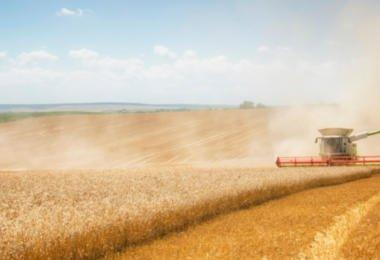 Governo abre concursos de 17,5 M€ em apoios ao investimento agrícola