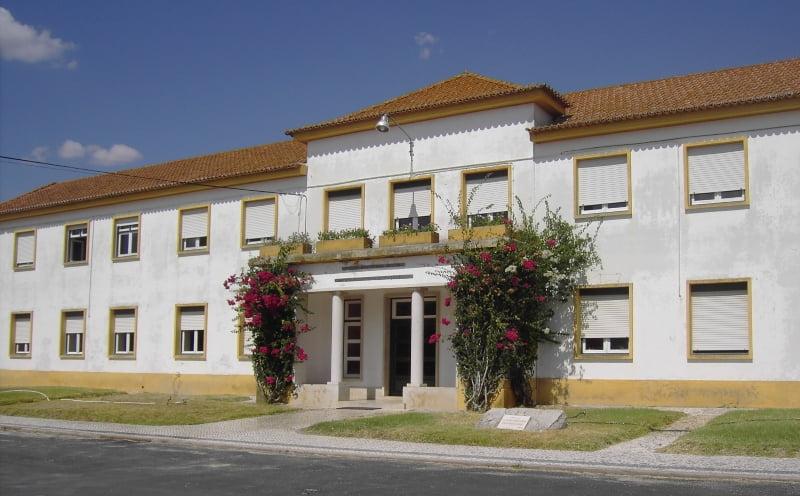 Centro de Excelência para a Agricultura e a Agro-indústria