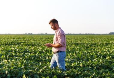Agricultores entram no regime fiscal dos residentes não habituais