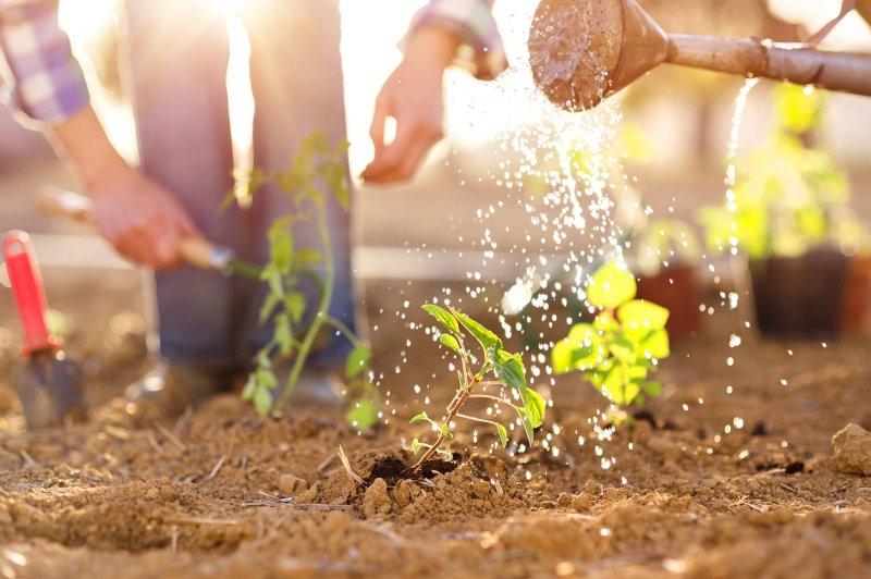 agricultura familiar vida rural