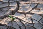 Desastres relacionados com o clima aumentam