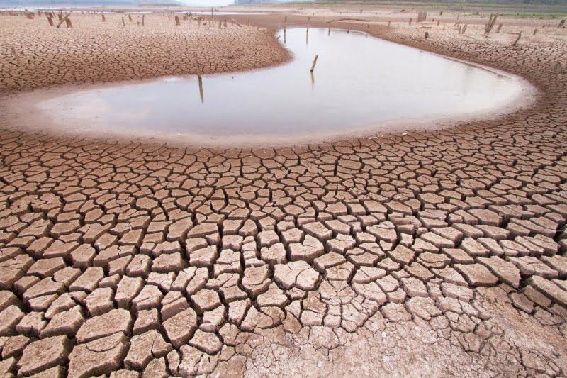 Parlamento insta Governo a declarar estado de emergência climática