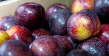 Fruta nacional já pode ser exportada para a Colômbia