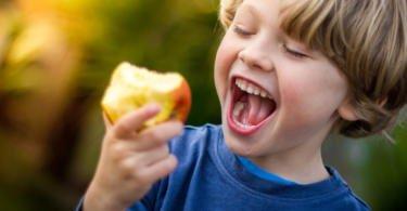 Direção-Geral de Saúde avalia programa de distribuição de leite e fruta nas escolas