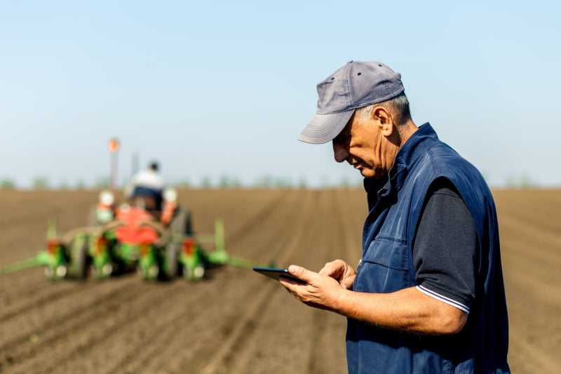 Albergaria-a-Velha lança serviço de aconselhamento técnico gratuito para agricultores