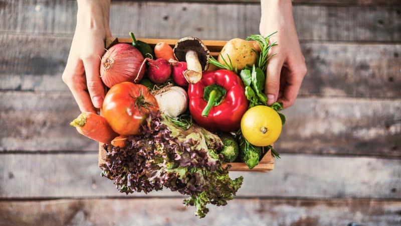 ONU aconselha dieta à base de plantas e alimentos de origem animal sustentáveis para combater alterações climáticas