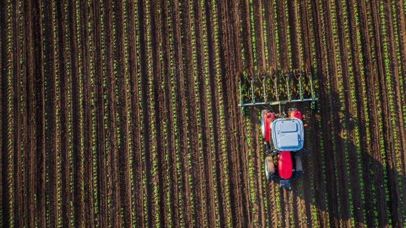 Agroalimentar nacional gerou 18 mil milhões de euros em volume de negócios