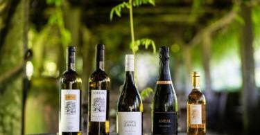 portofolio vinhos Quinta do Ameal