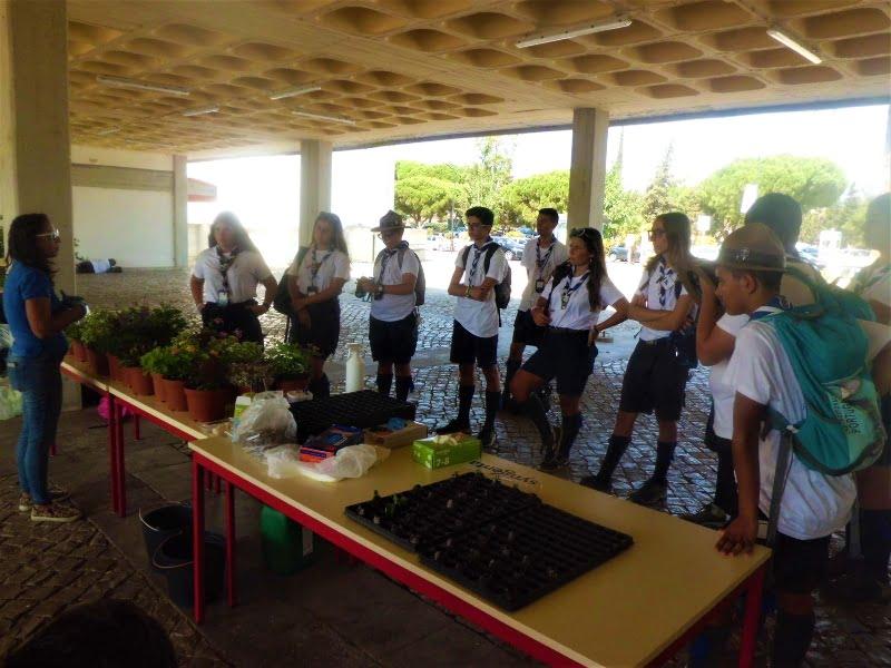 Syngenta e Universidade do Algarve promovem workshop de horticultura