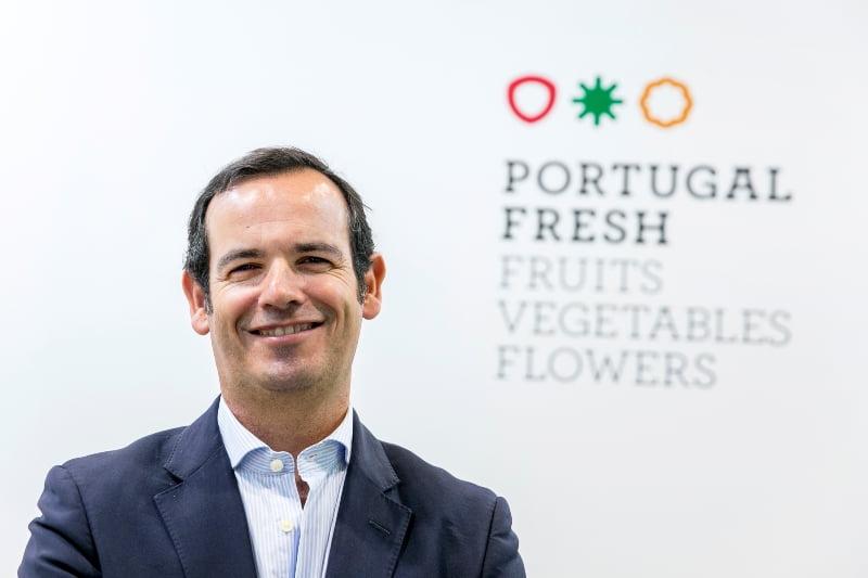 Portugal exporta mais hortofrutícolas em 2019