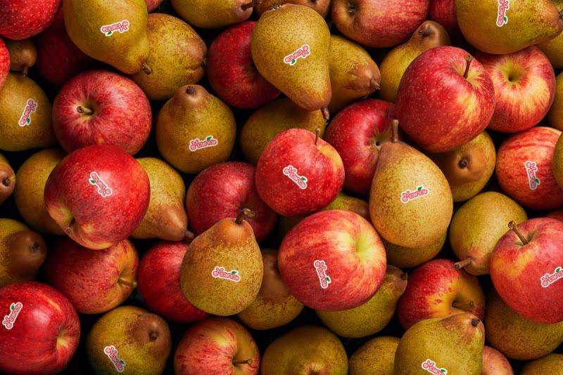 Portugueses não comem tanta fruta como deviam