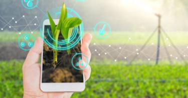 Sustentabilidade será o core da alimentação do futuro