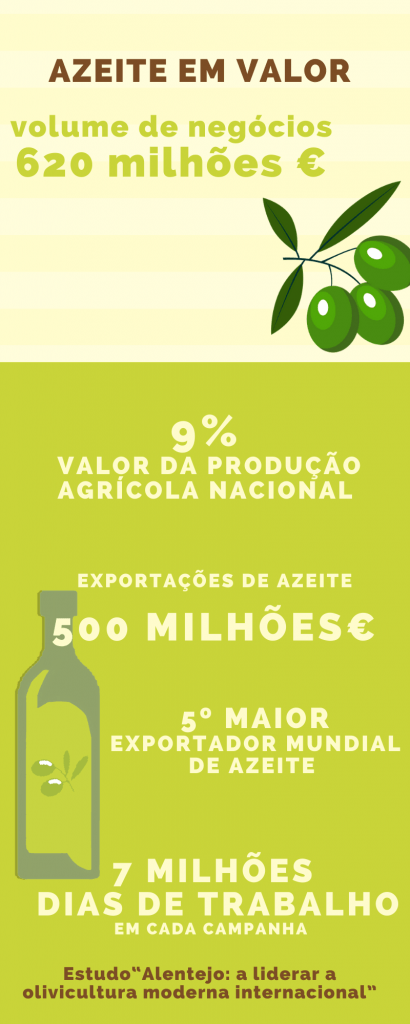 Azeite já representa 9% do valor da produção agrícola nacional